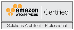 Joe is an AWS Certified Solutions Architect - Professional